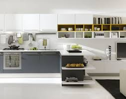 models of kitchen cabinets kitchen awesome kitchen cabinets ikea enchanting ikea kitchen
