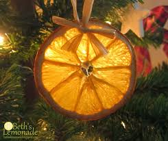 beth s lemonade rustic tree dried