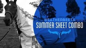 Weatherbeeta Combo Stable Rug Cheap Combo Stable Rug Find Combo Stable Rug Deals On Line At