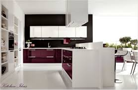 kitchen ideas cheap colors 2015 with oak cabinets photos of