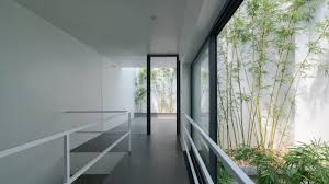 house inside bamboo grows up inside narrow vietnam house by nguyen khac phuoc