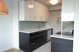 Black Or White Kitchen Cabinets by Home Design 89 Surprising Dark Wood Kitchen Cabinetss