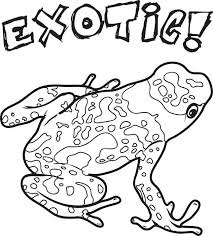 free printable exotic frog coloring kids