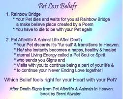 when a pet dies healing loss with brent atwater