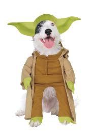 Jeff Hardy Halloween Costume 28 Adorable Ridiculous Dog Halloween Costumes