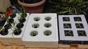 cara membuat cairan hidroponik cara membuat tanaman hidroponik dan contohnya belajar berkebun