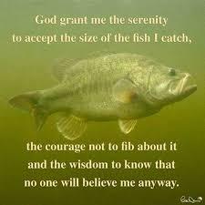 Funny Fish Memes - pin by kaitryn kelly on dec pinterest bass fishing