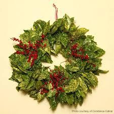 wreaths for wreath for wreaths tree shop