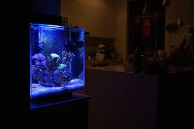 uncategories best small fish tank mini kitchen island countertop