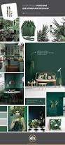 moodboard mostra aplicações do pantone kale cor que deve