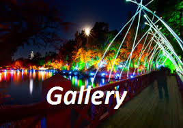 tsb festival of lights home page