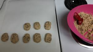 so there speckled robin u0027s egg easter chocolate chip cookie dough
