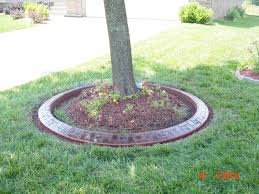 tree base landscaping project redo bring landscaping