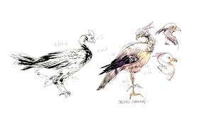 sketching birds from life video demonstration citizen sketcher