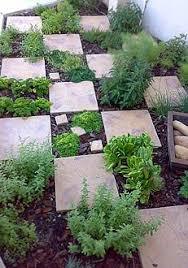 kitchen garden design ideas best 25 herb garden design ideas on plants by post