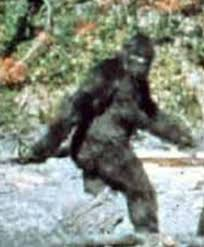 Bigfoot and other exercise myths!