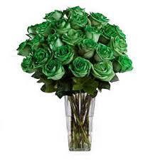 green roses forest green spectacular bouquet 2 dozen green roses