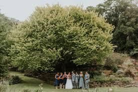 wollongong botanic gardens villa d u0027oro wedding wollongong lauren alex the evoke company