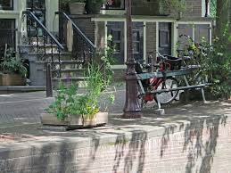 the fault in our stars bench is back in amsterdam time