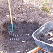 více než 25 nejlepších nápadů na pinterestu na téma mushroom compost