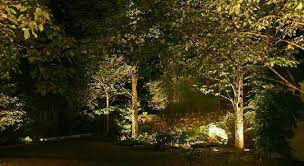 Landscape Tree Lights Artistic Landscapes Low Voltage Landscape Lighting