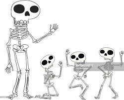 poseable skeleton poseable skeleton vector getty images