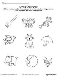 9 best science worksheets images on pinterest science worksheets