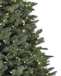 balsam fir trees balsam hill