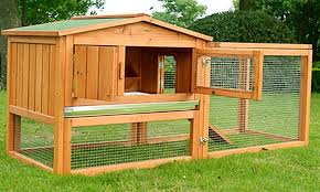 Rabbit Hutch Wood Fir Wood Rabbit Hutch And Chicken Coop Groupon