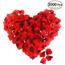 Angebote Schlafzimmer Zurbr Gen Kunstblumen U0026 Pflanzen Amazon De