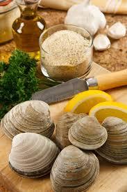 cuisiner des palourdes fraiches palourdes de littleneck fraîches image stock image du mollusque