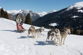 lombardy alps dog sledding and snowshoeing in valdidentro