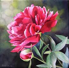 flower painting peony pink magenta peony watercolor