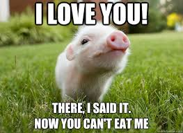 Eat Me Meme - i love you there i said it now you can t eat me funny pig meme