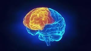 ultramind solution book fix your broken brain by healing broken brain trailer youtube