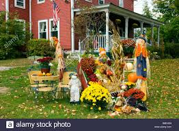 autumn yard decor with pumpkins corn stalks and scarecrows at the