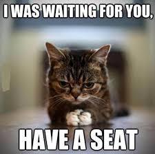 Funny Swearing Memes - 29 best life in meme s world images on pinterest ha ha funny