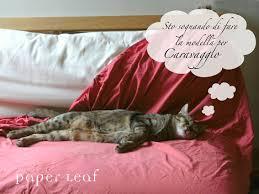 gatti divani paper leaf agata e i gatti
