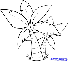 how to draw a palm tree drawing sketching clip art library