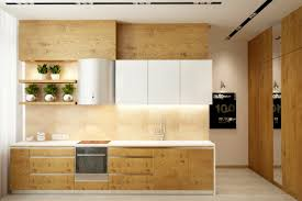 Contemporary Kitchen Best Contemporary White And Wood Kitchen - Painting wood kitchen cabinets ideas