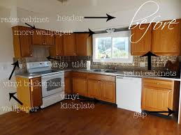 Do It Yourself Kitchen Cabinets Do It Yourself Kitchen Cabinets Tags Diy Kitchen Remodel Dark