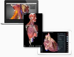 3d Medical Software Essential Anatomy 3 U2013 3d4medical