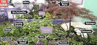 Rock Garden Plants Uk Rock Garden Plants Uk Keep Out If You A Sensitive Nose This