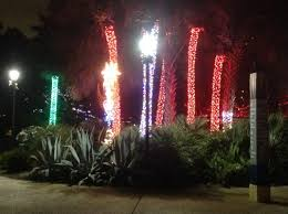Zoo Lights In Houston by Houston Zoo Lights Pgfintegrations