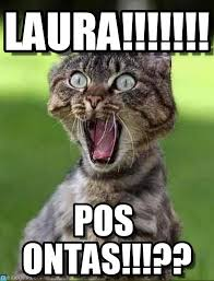 Laura Meme - laura screaming cat meme on memegen