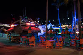del taco halloween horror nights jimmy buffett u0027s margaritaville at universal citywalk orlando
