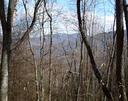 Shining Rock Wilderness Map Fork Mountain Loop Starting At Daniel Boone Boy Scout Camp