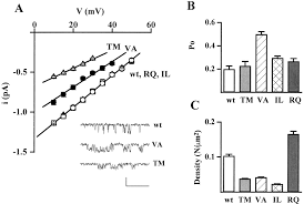 functional consequences of mutations in the human α1a calcium
