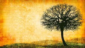 tree art wallpaper 1920x1080 9718