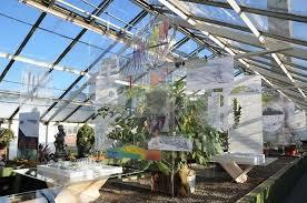 Botanical Garden Buffalo Architecture Students Envision Future Of Botanical Gardens